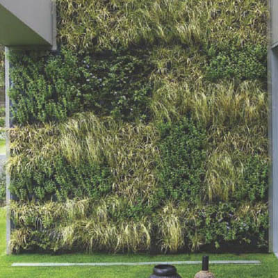 external green wall