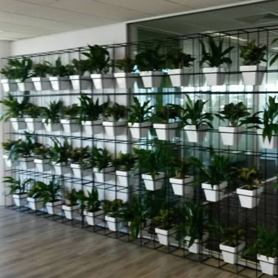 Green walls vertical gardens plantscaping custom Green walls vertical planting systems