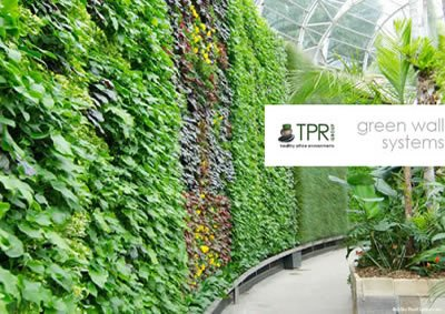 TPR GROUP green wall brochure