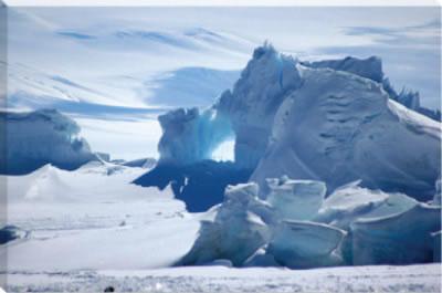 canvas art antarctica