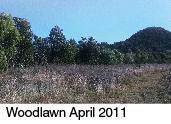 woodlawn 2011