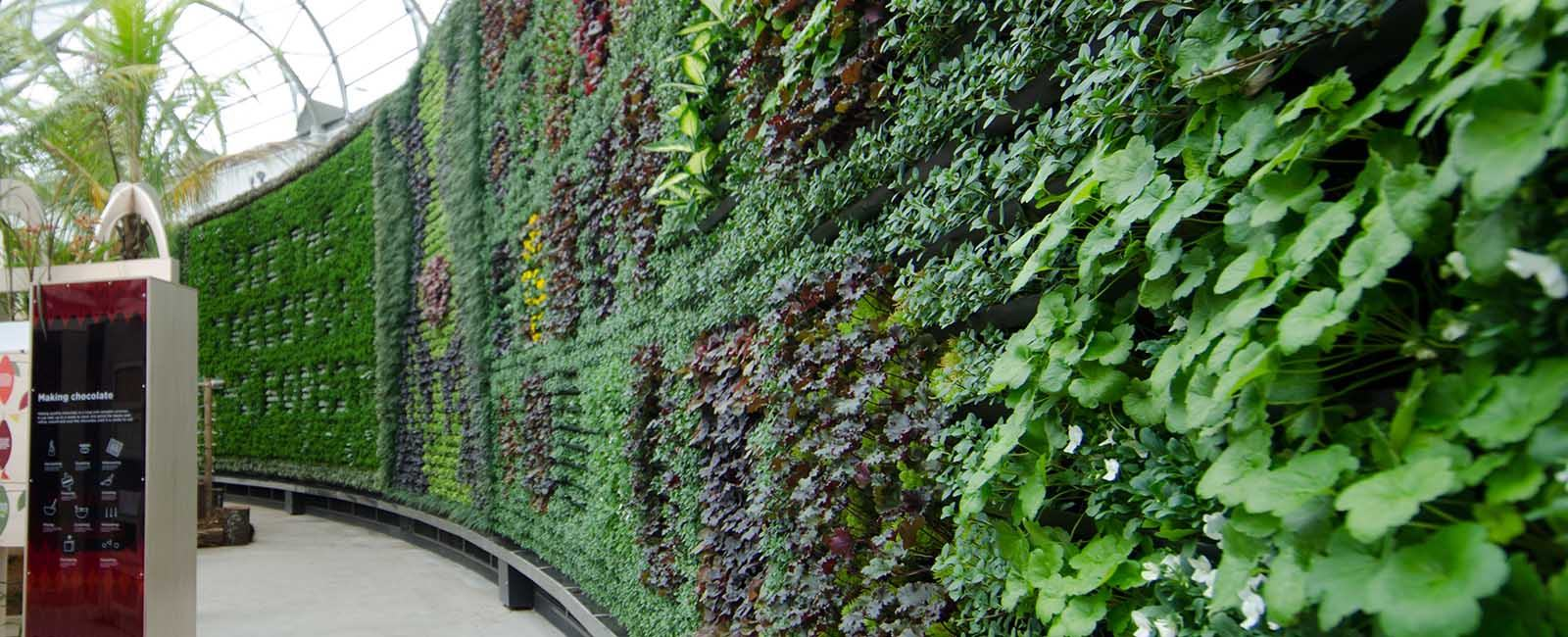 royal botanical gardens green wall