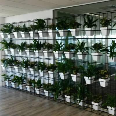 attache pot plant vertical garden