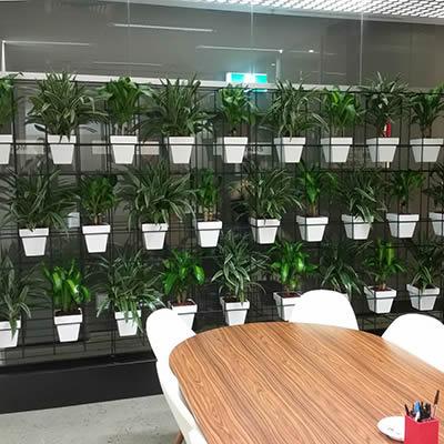 future people pot plant vertical garden