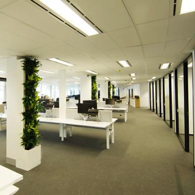 horticulture of australia custom build green wall