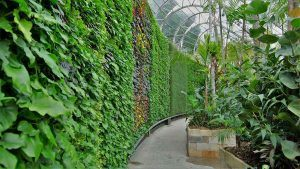 TPR GROUP Green Wall