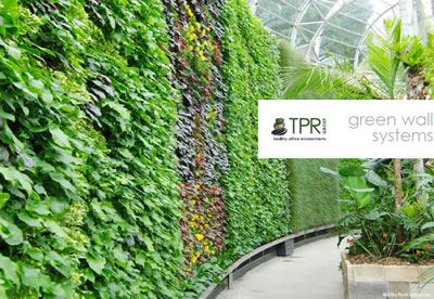 tpr group green walls brochure