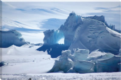 canvas art antarctica